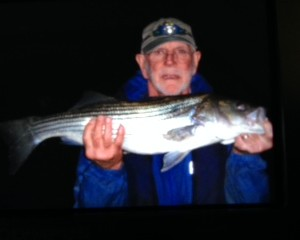 30″ STRIPER CAUGHT ON GOLD PIRANA